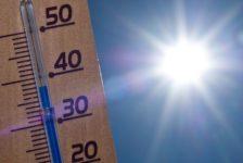 Татарстанда эсселек 40 градуска җитәрме?