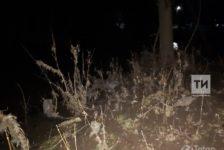 Кукмара районында яшь ярымлык сабый фаҗигале төстә үлә [фото]