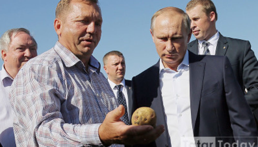 Путинның балачагы: Президент бәрәңге ашыймы?